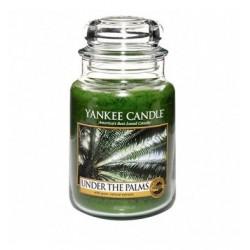 Yankee Under The Palms 623g